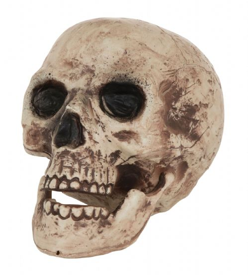 Halloween Skull Large Prop Trick Or Treat Fancy Dress Party